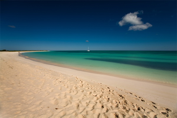 Loblolly Beach Anegada BVI