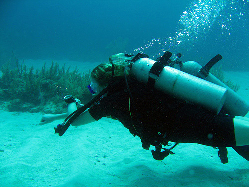 Navigation Dive - An 8-point course